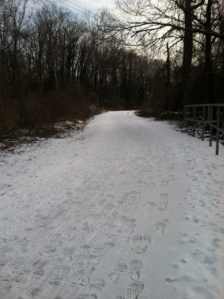 The peacefulness of a snowy trail run.