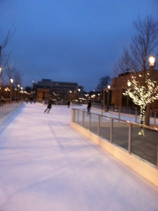 ice rink 2013 3