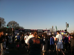 Runners ready to start the race.