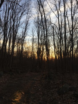 01. Sunrise on the trail