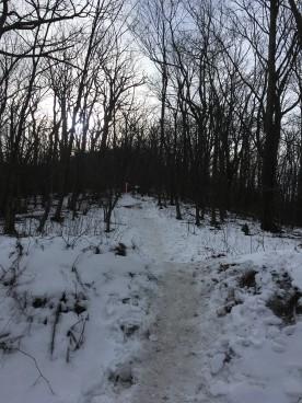02. Snowy trail